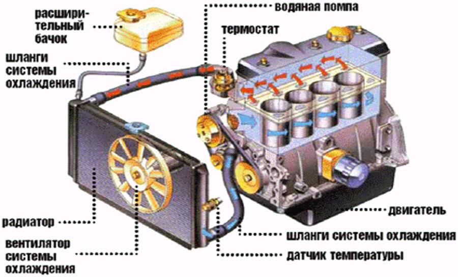 radiator_8.jpg